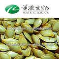 caliente la venta de semillas de calabaza extracto de proveedores
