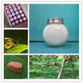 Insecticidas diflubenzuron 25% wp 20% sc de control de los cultivos de aceite, hortalizas crucífero