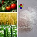90% tc puro brassinólido natural en polvo