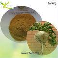 Organiques poudre de racine de maca extrait/macamides/4:1 macaenes