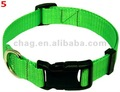 verde de nylon collar de perro con hebilla de liberación rápida