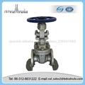 Clase 600 WCB Válvula de compuerta para el gas natural