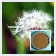 Planta de extracto flavonas 3% hplc extracto de diente de león