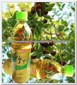 Best soft beber jugo de fruta de la salud