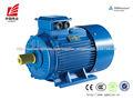CA estándar IEC 380V 30HP Inducción Eléctrica Motor
