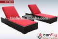 Tf-9419 especial lounge rota 2 tumbonas wiht una mesa de café