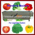 Pre- equipo de procesamiento de maquinaria blancher para vegetales y alimentos auspt- 1000