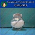 Azoxistrobina 96% tc, 5% 10% sc, 25% sc, 25% wp, 70% wp, 50% 75% wdg