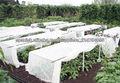 100% polipropileno spunbond la tela no tejida para la jardinería u