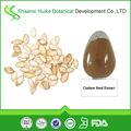 natural de semillas de calabaza extracto en polvo