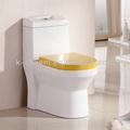Cuarto de baño de una pieza de baño WC Aseo