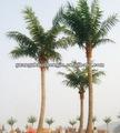 Faux artificiel grand arbre de noix de coco / décorative et haute imitation artificielle arbre de noix de coco faux fabriqués en