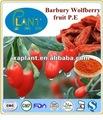 Gmp fabricante de alta calidad& 100% natural de fruta wolfberry extracto- polisacáridos
