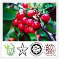 17% natural de la vitamina c cereza acerola extracto
