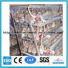jaulas de codornices para la venta