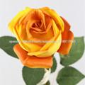 flor de ali empresa exportadora de rosas
