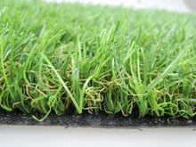 Confiable suministrador de hierba jardín