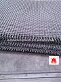 De acero inoxidable de malla de alambre ondulado/mina de tamizado de malla