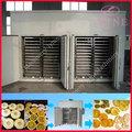 setas secadora / fruta secadora / secadora vegetal