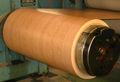Gaza / Acero recubierto de zinc / inmersión en caliente de la bobina de acero galvanizado