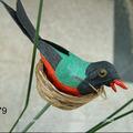 juguetes hermosos pájaros
