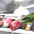 Flor del tulipán plástico