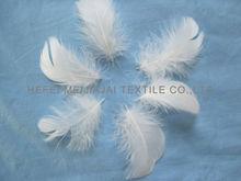 plumas a granel para la venta