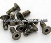 Tornillos en miniatura/tornillos micro/tornillos de precisión