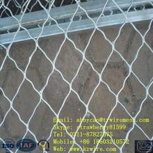 Guardia hermosa grid valla con garantía de calidad( fábrica)