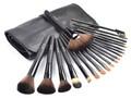 20 Pcs Makeup Brush Set Make up Brush Set Goat Hair Wood Handle Makeup Tool Kits with Makeup Bag