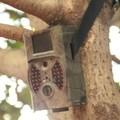 cámara del rastro de la caza del OEM