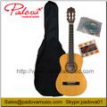 Guitarra Clásica Principiante