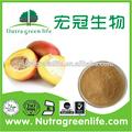 Semillas deirvingia gabonensis extracto,igob131, mango de áfrica extracto de la semilla