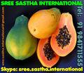la fruta de papaya