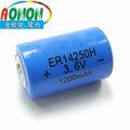 ER14250 3.6V lithium battery