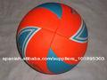 Voleibol Promoción 8 paneles de playa,