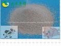La enzima lipasa 20,000u/g para la alimentación de cerdos