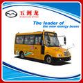 6m Autobús Escolar