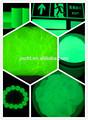 Resplandor en el pigmento oscuro en polvo/pigmento fotoluminiscente/luminoso pigmento/polvo luminoso