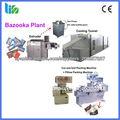 Food Processing Machine-Bazooka Bubble Gum Plant