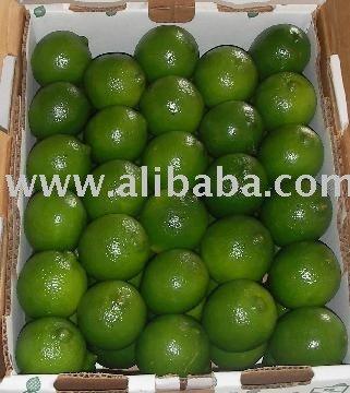 persian lime, orange, grapefruit