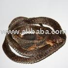 Dried Snake
