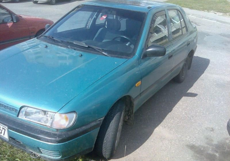NISSAN Sunny used cars