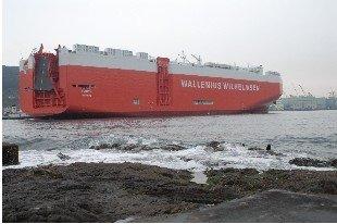 MV Torino vessel freight