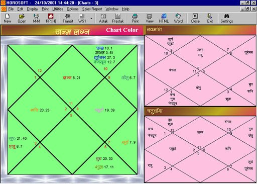 Professional Astrology Software Programs