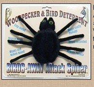 Birds Away Attack Spider