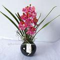 2013 artificiale conservati vasi di plastica per le orchidee