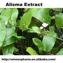 Alisma Extract/diabetes mellitus treatment