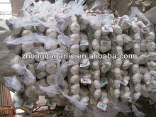 chinese imports wholesale braid garlic