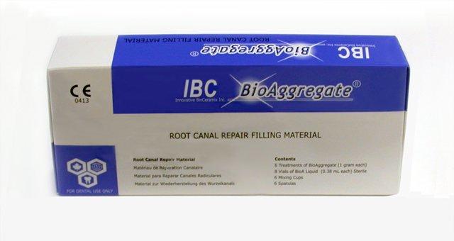calcium phosphate cement thesis